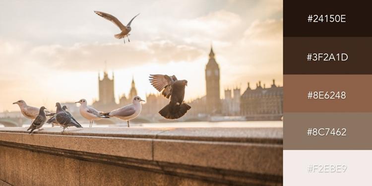 Bộ màu được lấy cảm hứng từ khung cảnh bên bờ sông Thames, Luân Đôn; gồm các sắc thái nâu và xám trầm ấm