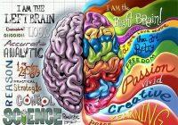 Bộ não khi thuyết trình với sếp