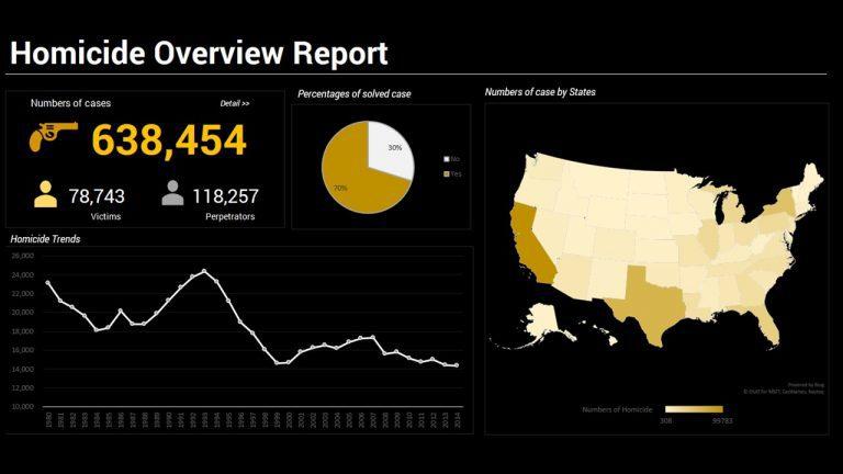 Homicide Overview Report