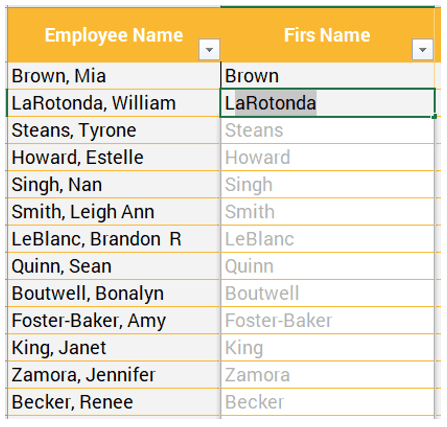 Flash Fill Excel